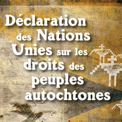 DNUDPA —Le Sénat du Canada approuve le projet de loiC-15